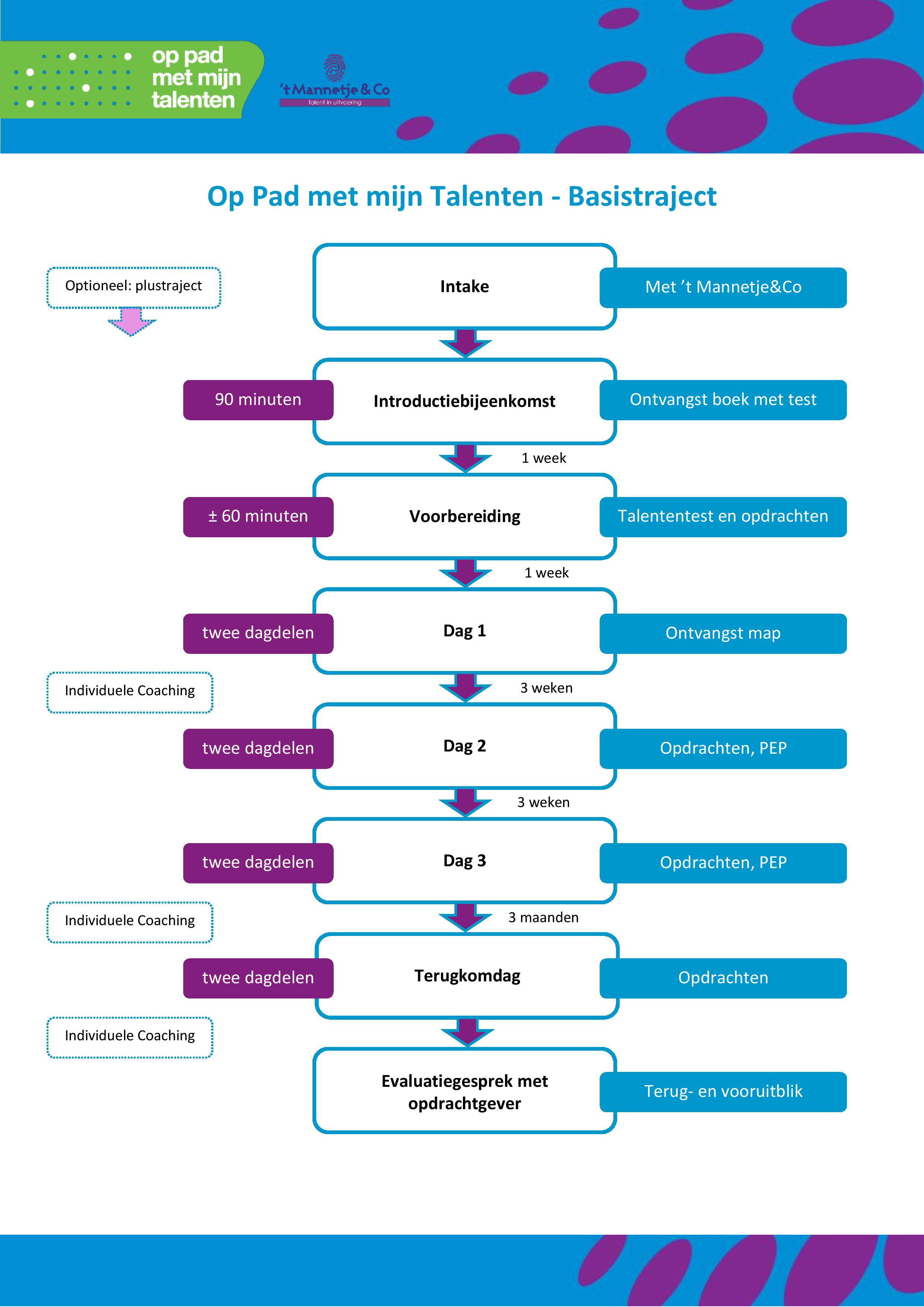 Overzicht basisprogramma